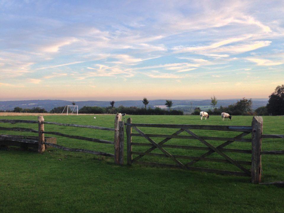 Pohled na údolí s ovečkama